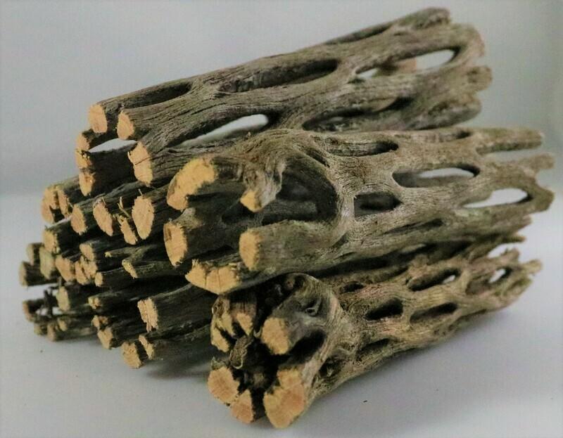 Cholla Wood - 3 Inch