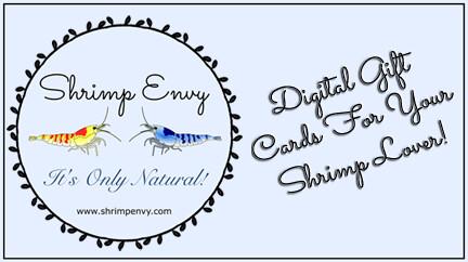 Shrimp Envy Digital Gift Card