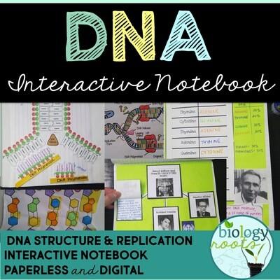 DNA Interactive Notebook