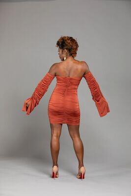 Kim Sleeve Mini Dress