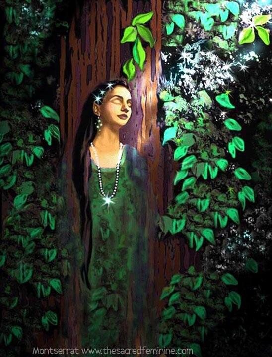 Trees Awakening Post Card by Montserrat