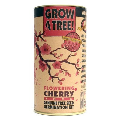 Flowering Cherry Blossom // Seed Grow Kit