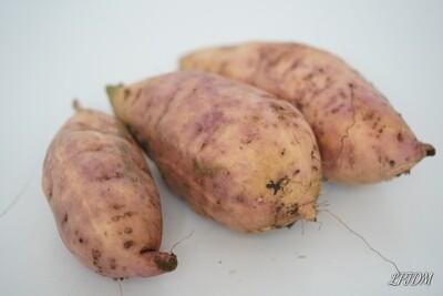 Patates douces bio au kg