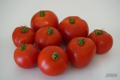 Tomates rondes Bio (500g)