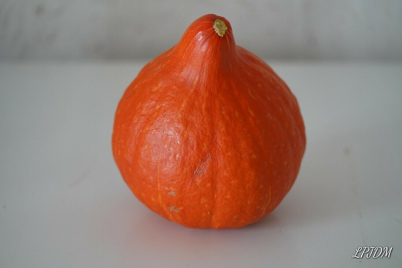 Potimarron bio (pièce de 0,5 a 1kg)