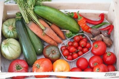 Panier de légumes Bio à 15€ semaine 31