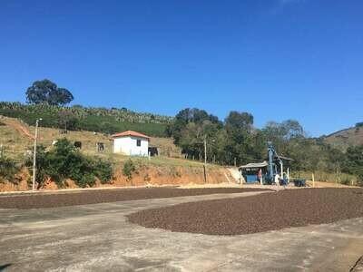 Brazil - Bota Fora