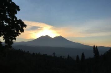 Nicaragua - Finca Mote Cristo