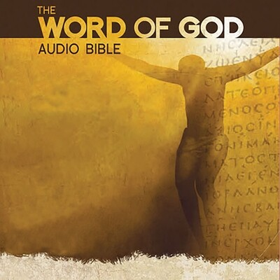 The Word of God Audio New Testament Bible CD Set (18 CDs in a Collector case)