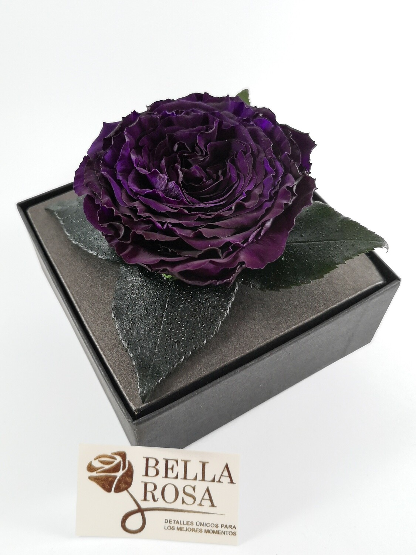 Rosa Preservada Carmen Púrpura Caja Acrílica