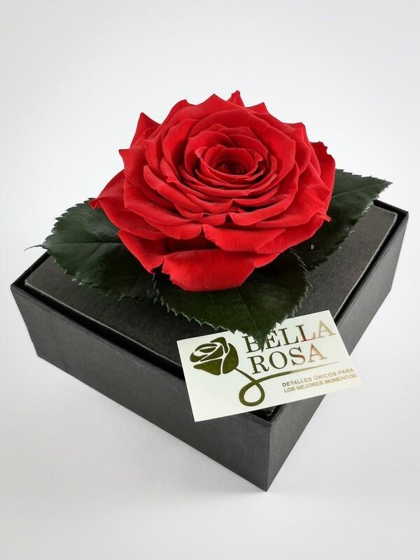 Rosa Preservada Roja Caja Acrílica