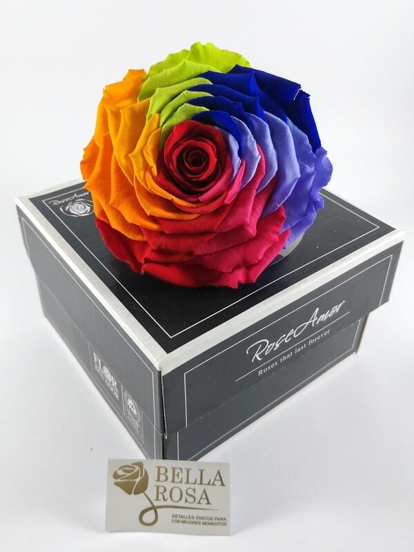 Rosa Preservada XXL Arcoíris