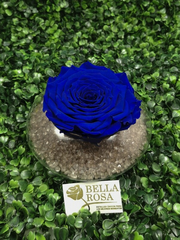 Rosa Preservada Azul en Base de Vidrio