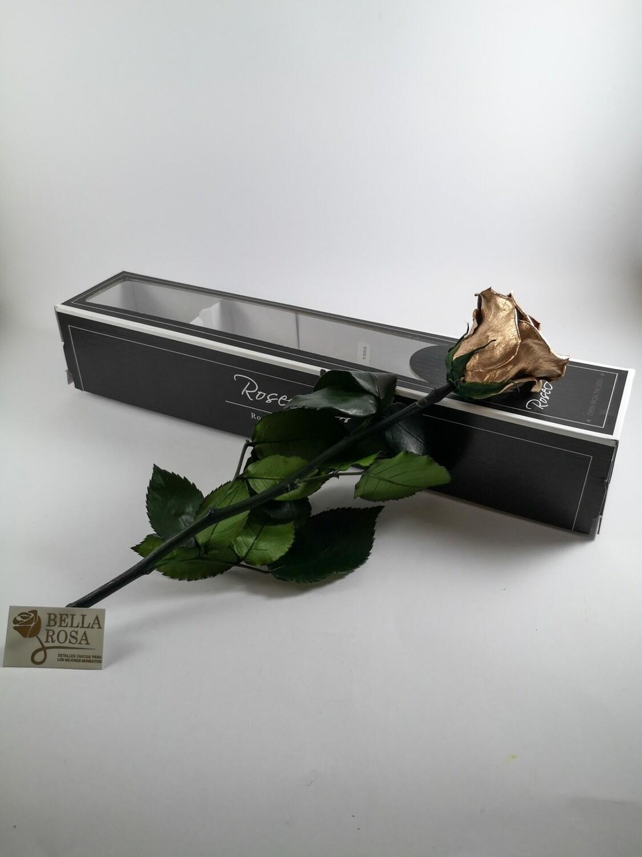 Rosa preservada Dorada Con Tallo