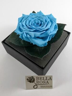 Rosa Preservada Celeste Caja Acrílica