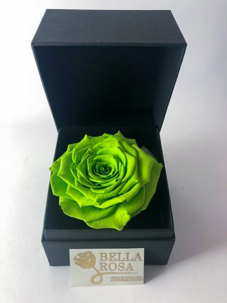 Rosa Preservada Verde (9cm  x 8.5 cm) en Caja Negra Elegante (9.5 cm x 9.5 cm)