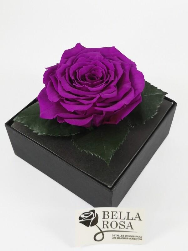 Rosa Preservada Morada Caja Acrílica