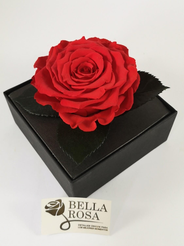Rosa Preservada Rojo Claro Caja Acrílica