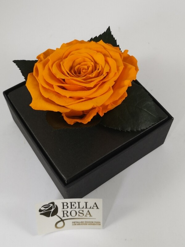 Rosa Preservada  Anaranjado Oscuro Caja Acrílica