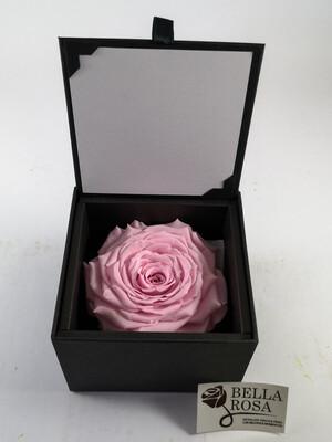 Caja elegante (10.5x 10.5cm )  con rosa natural preservada, (9x 9cm) color rosa