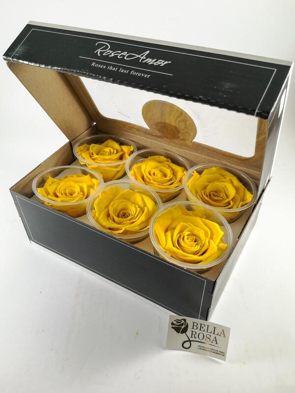 Caja con 6 rosas preservadas color amarillo