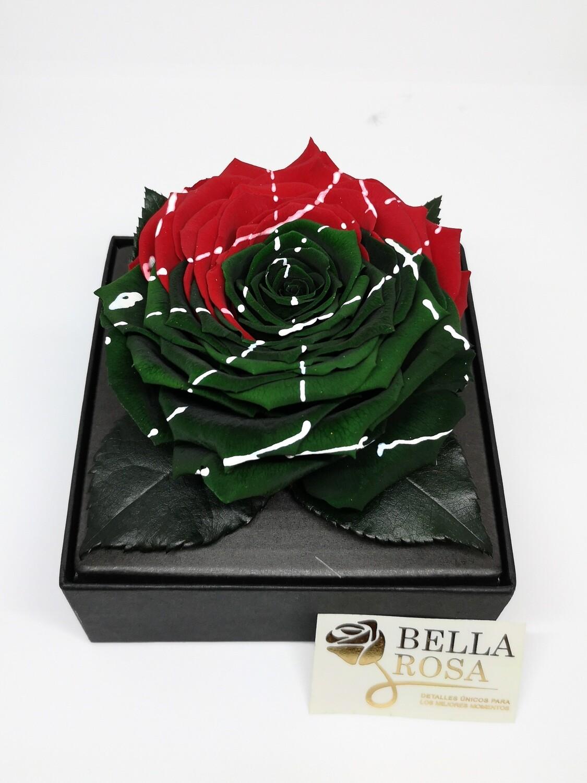 Rosa Preservada Roja Y Verde en Caja Acrílica