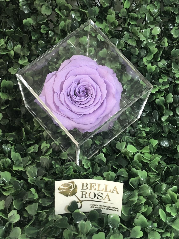 Caja acrílica lila