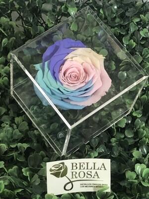 Caja acrílica multicolor
