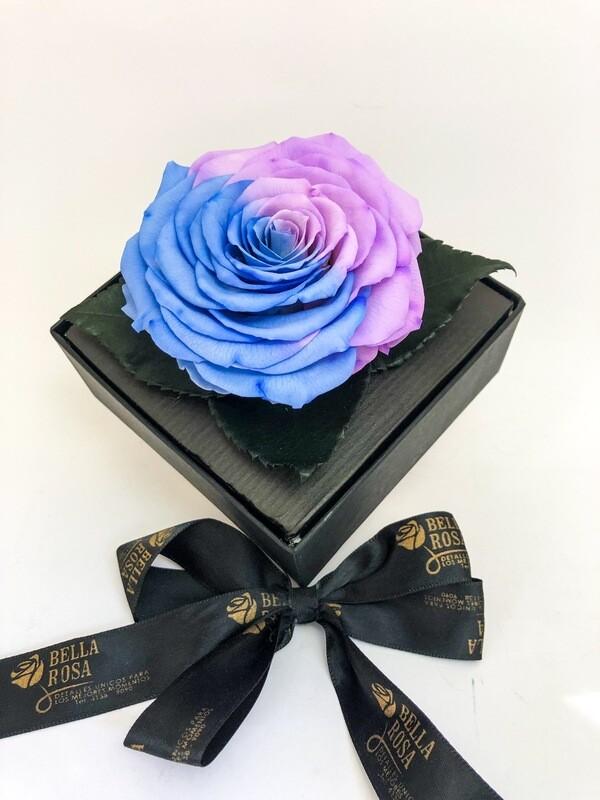 Caja acrílica con rosa Bi color