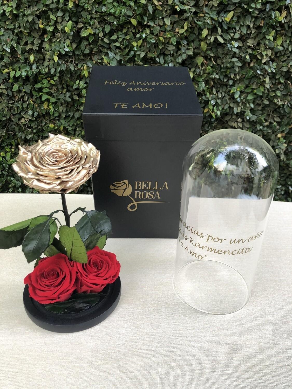 Cúpula de cristal de 25 cm de alto con rosa natural preservada color gold y 2 rosas XL