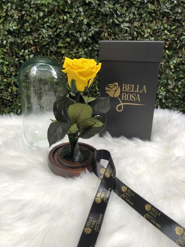 Cúpula de cristal de 22 cm de alto con una rosa preservada