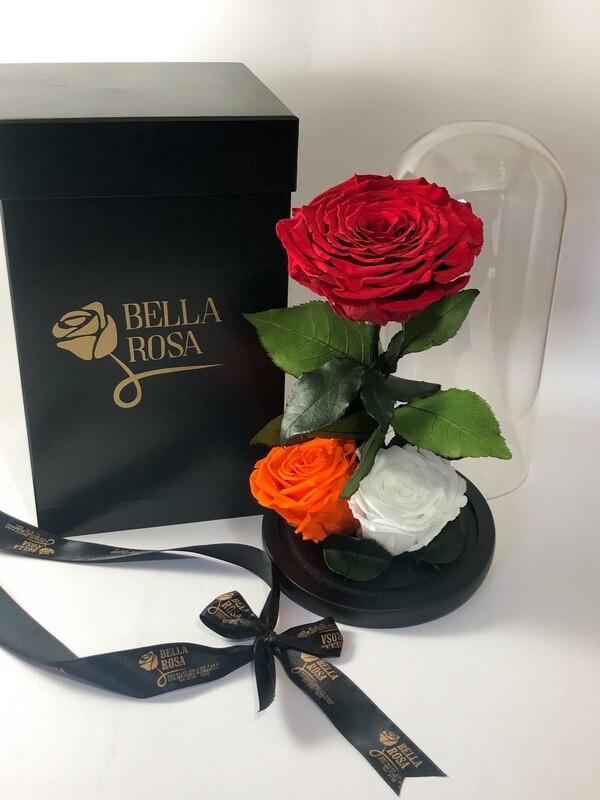 Cúpula de cristal de de 25 cm de alto con 1 rosa natural preservada XXl y 2 rosas XL
