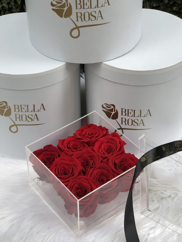 Caja Premium con 9 rosas preservadas