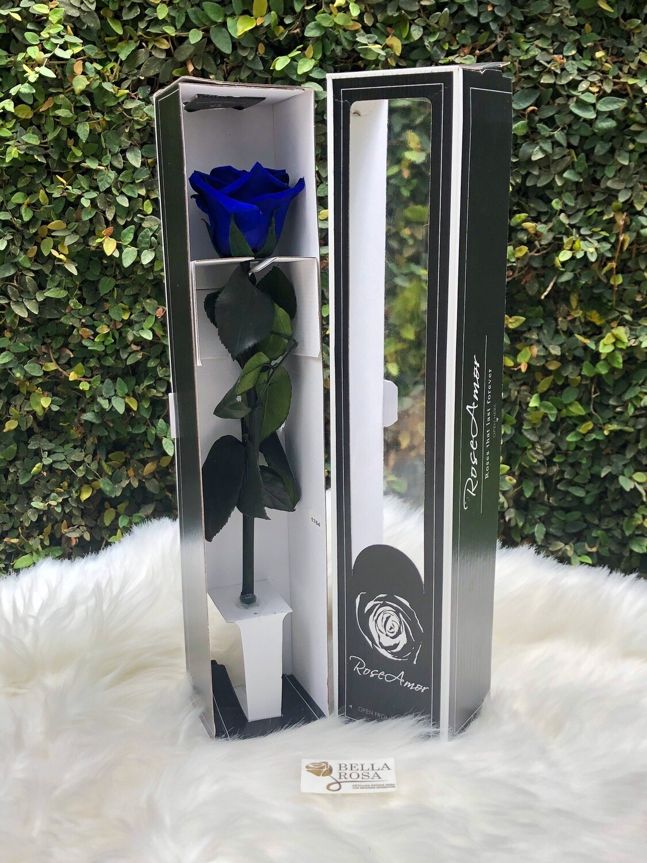 Rosa natural preservada 30 cm de alto
