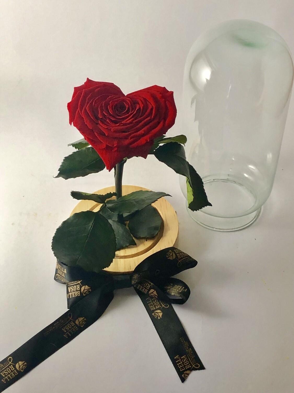 Cúpula de cristal de 22 cm de alto con una rosa preservada en forma de corazón