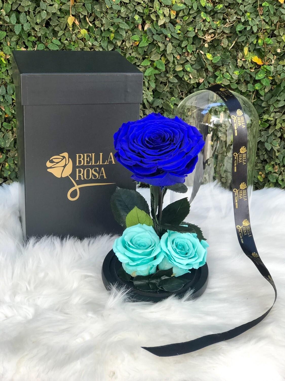 Cúpula de cristal con 3 rosas preservadas