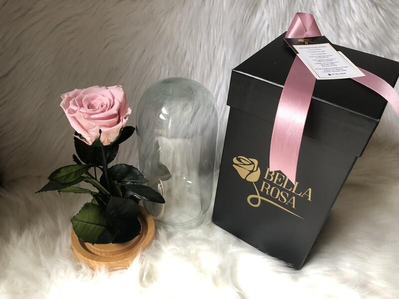 Cúpula de cristal de 21 cm de alto con rosa pin 04
