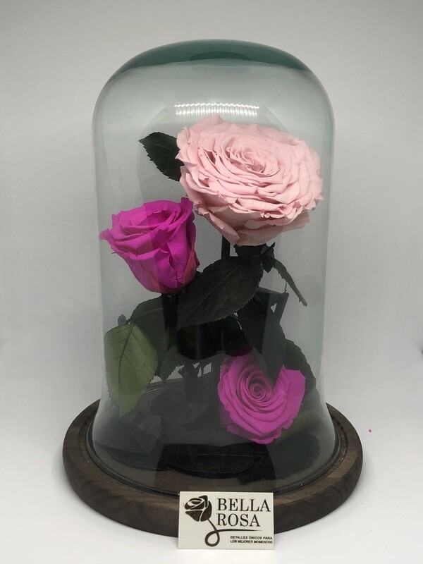 Cúpula de cristal de 30 cm de alto y 24 de circunferencia con 3 rosas preservada