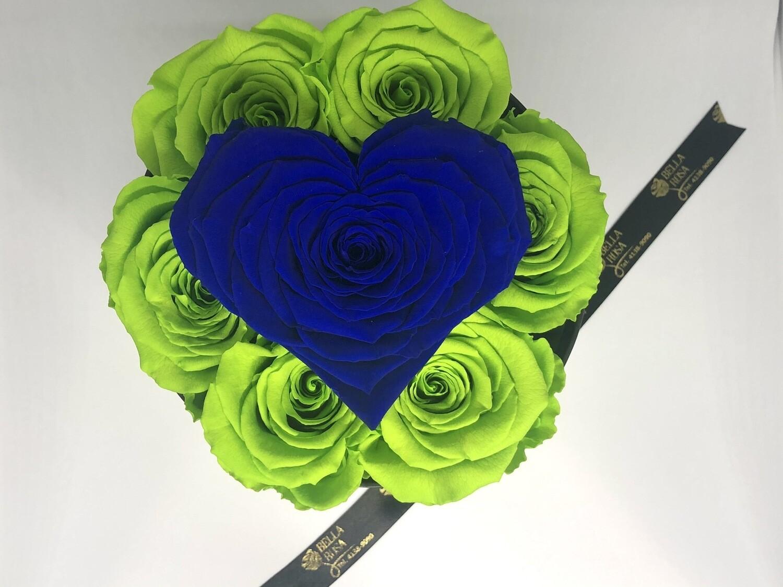 Caja con 7 rosas preservada y 1 en forma de corazón