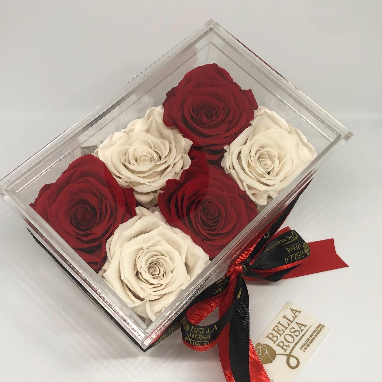 Caja Premium con 6 rosas preservadas