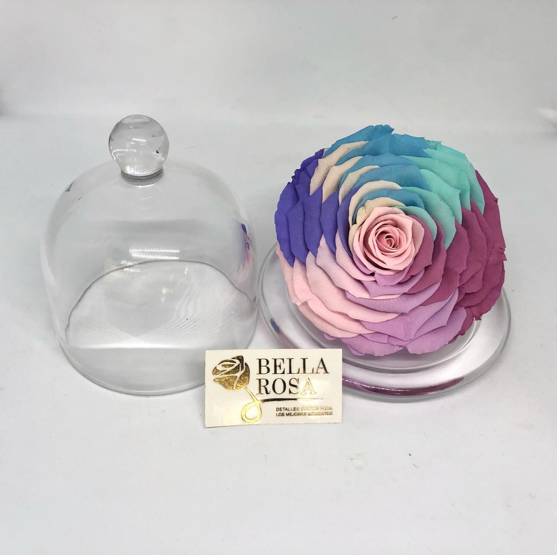 Mini cúpula con rosa natural preservada. Candy Rainbow