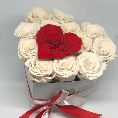 Caja en forma de corazón con 12 rosas tamaño Xl y 1 en forma de corazón