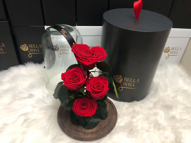 Cúpula de cristal de 30 cm alto, rosas preservadas
