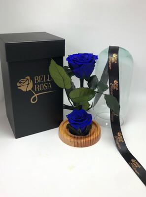 Cúpula de cristal de 22 cm de alto con 2 rosas preservadas
