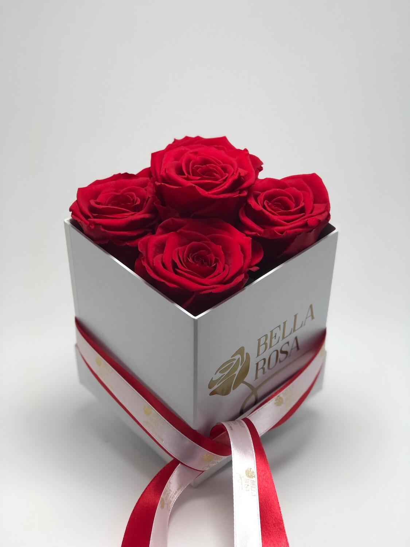 Caja 5 rosas