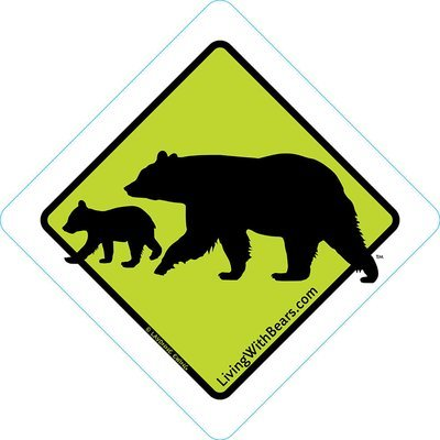 Black Bear Sign Artwork - Mama Bear & Cub (GREEN)