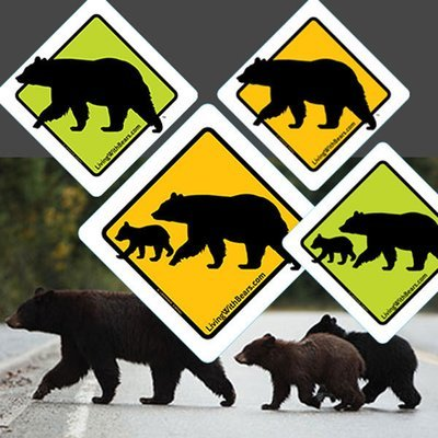 Black Bear Sign Artwork (all 4 versions)