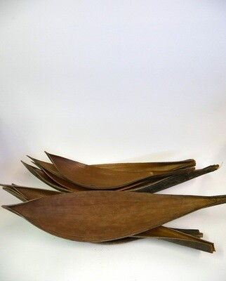 Cocoa Spade Medium
