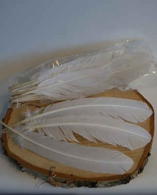 White Goose Feathers
