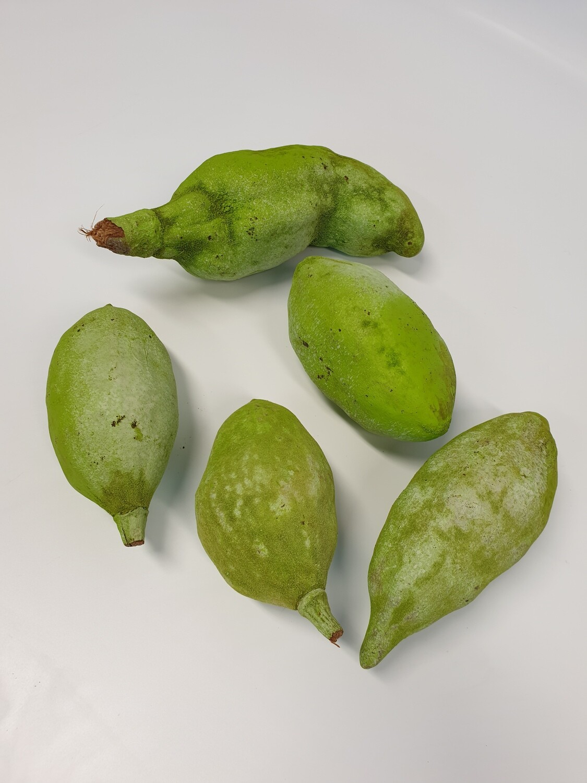 Boabab Green